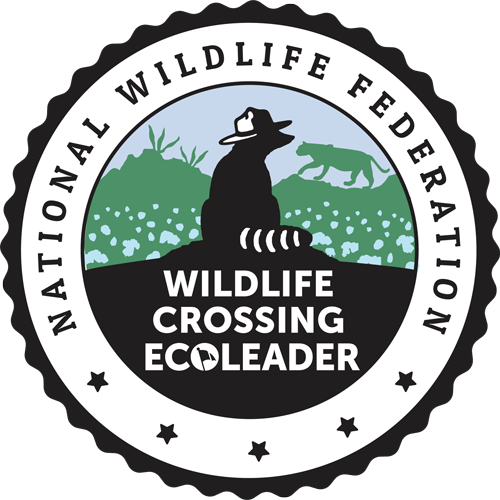Wildlife Badge