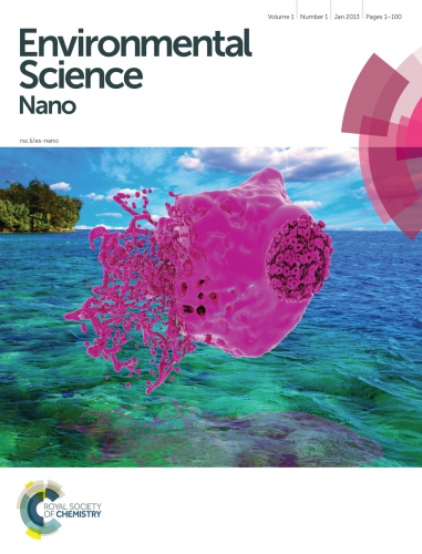 Environmental Science Nano cover art (abstract pink shape over a tropical beach background)