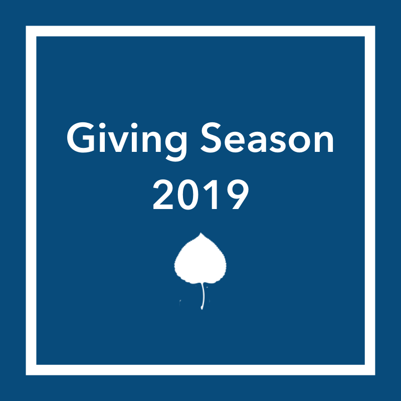 Support Causes Meaningful To Fellows: 2019 Giving Season 230