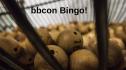 Let's Play... bbcon Bingo! 7913