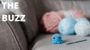 The Buzz: September 22, 2021 7960